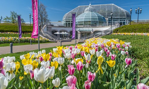 Phipps Conservatory and Botanical Gardens has provided a world-class garden experience since 189