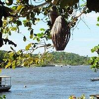 Rio Caraívas