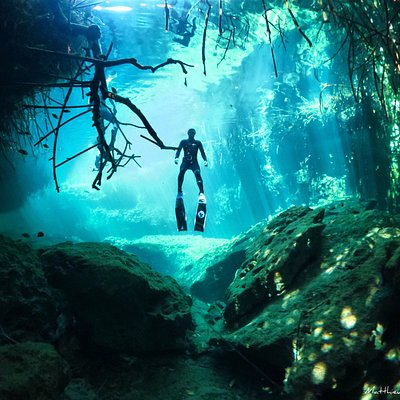 Have fun in the beautiful Cenotes