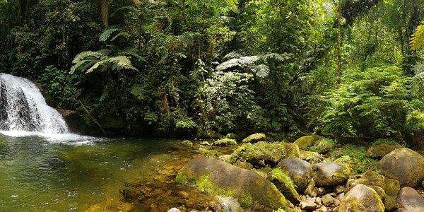 Cachoeira do Ribeirão Branco