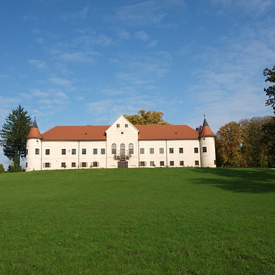 Lužnica manor - castle