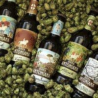 Alcune delle birre della gamma Antoniana, in degustazione durante la visita in birrificio