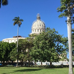 Capital Building from end of park