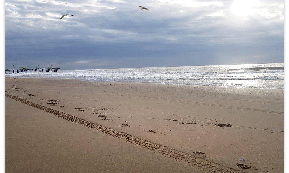 """Huellas en la playa cerca del muelle Ostende,  Pinamar temporada 2018 Dale un """"me gusta"""" si te sirvió la información para apoyar mi trabajo"""