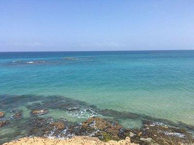 Habonim Marin reserve