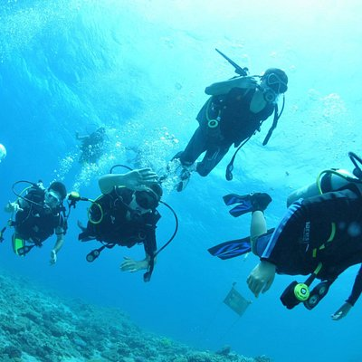 starter and advanced diving courses