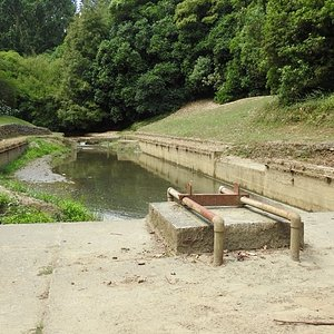 Remains of diving board at William Birch Pools.