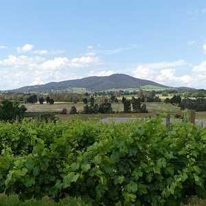 View from Badgers Brook Winery.