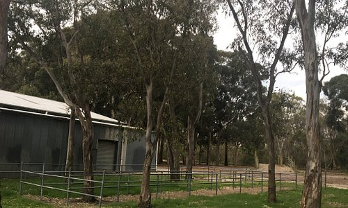 Greaves Reserve