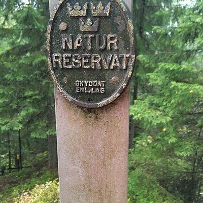 Spännande natur