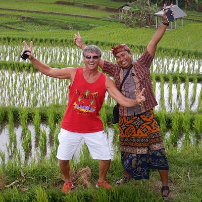 Beautiful rice paddy