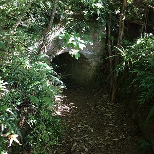 Tunnel to walk through