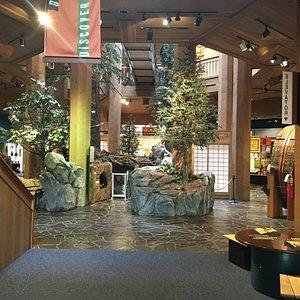WFC Lobby Exhibits