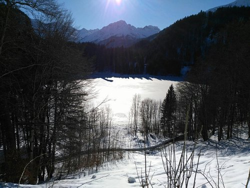 Freibergsee im Winter
