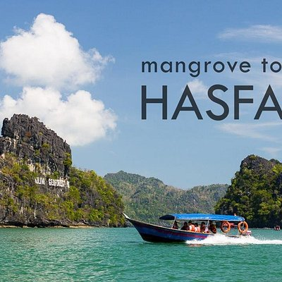 Mangrove Tour by Hasfary