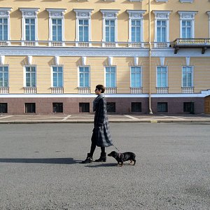 Palace square, St-Petersburg style