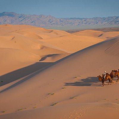 Khongor Sand Dune, South Gobi