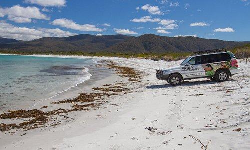 Beach drives