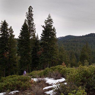 Tompkins Memorial Trail, 7/8 mi. from Northstar