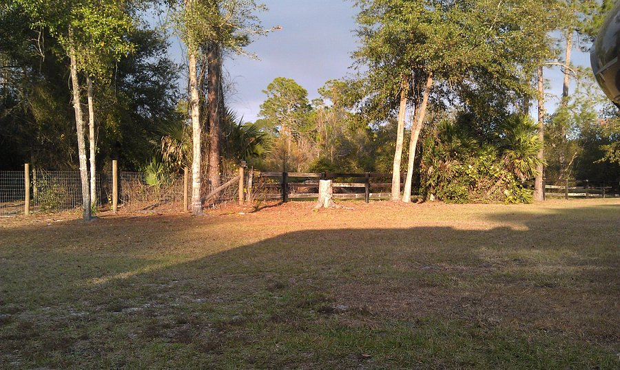 WHISPERING PINES RV PARK (AU$39): 2020 Prices & Reviews ...