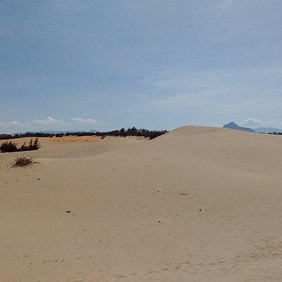 Đồi cát Nam Cương vẫn còn khá hoang sơ, chưa có nhiều dịch vụ ở đây