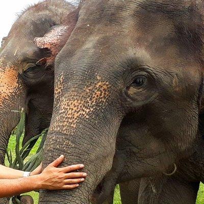 Vos vacances en THAILANDE avec SAWADI SAIYOK JUNGLE ADVENTURE