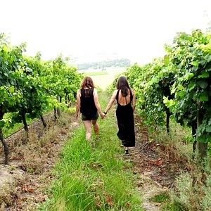 Venture into the Yarra Valley and see the beauty its offers
