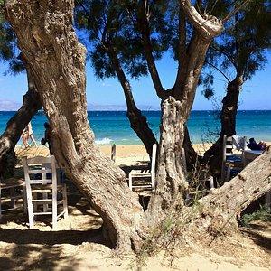 plage de Logaras