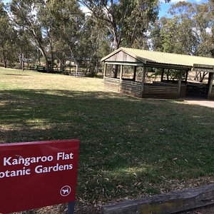 Kangaroo Flat Botanic Gardens