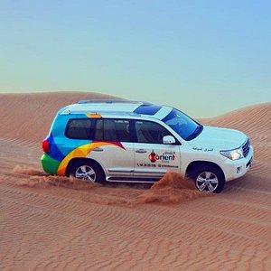 Safari - Dune bashing