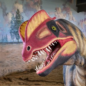Life-restoration model of an Early Jurassic Dilophosaurus