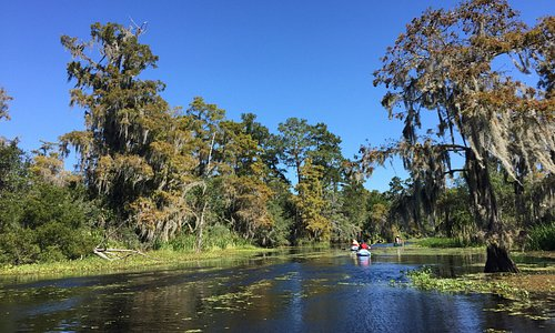 Kayaking down Cane Bayou with Canoe and Trail Adventures.
