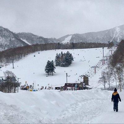 Mt. Teine lift and ski track