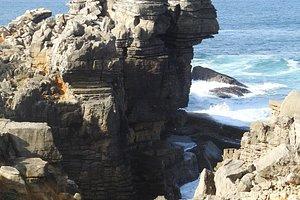 eenzame visser op rots