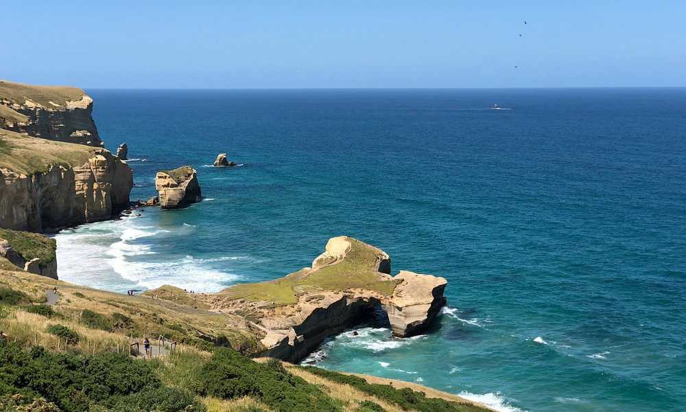 Tunnel Beach - from the track
