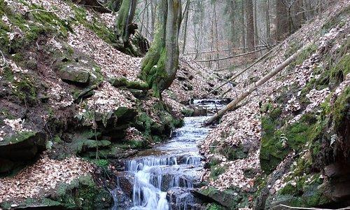 Naturdenkmal Elendsklamm Bruchmühlbach Wasserkaskade