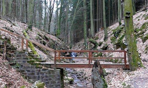 Naturdenkmal Elendsklamm Bruchmühlbach