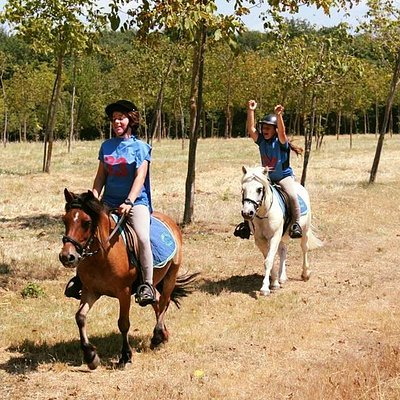 Endurance with the ponies