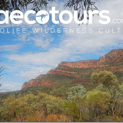 Welcome to SA Eco Tours