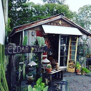 Cedar &Vine Yandina  opposite the Bakery in Yandina