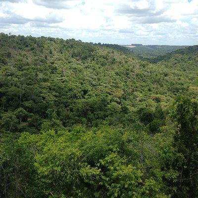 Vista do Parque Nacional do Pau Brasil a partir do Mirante da Sede