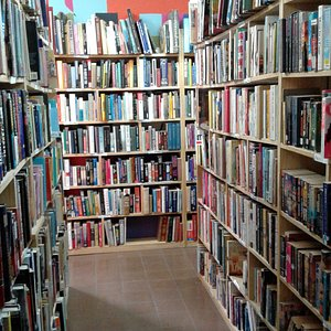 A World of Exciting Books