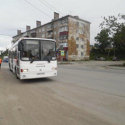 loop line bus