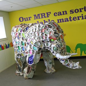 'Bin Bin' the resident recycled elephant
