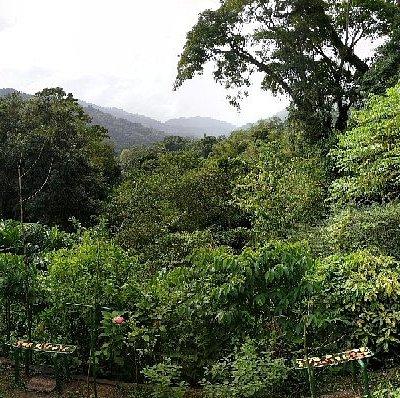 Trinidad & Tobago Sightseeing Tours