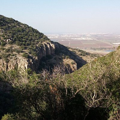 View of the stream, looking at Jezreel Valley
