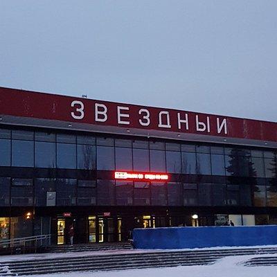 ДС Звёздный