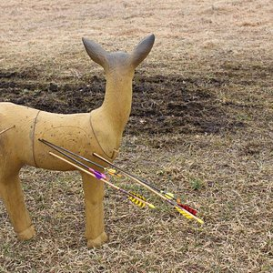 3D target for bloodless bow hunting.