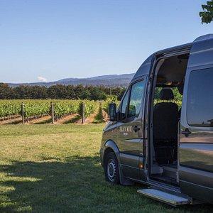 Elevate Wine Tours - Transportation