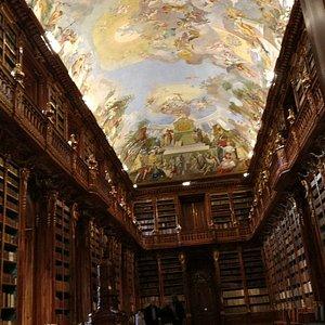Η βιβλιοθήκη πίσω από το απαγορευτικό σχοινί. Ακόμα και για αυτή τη φωτογραφία έπρεπε να πληρώσω